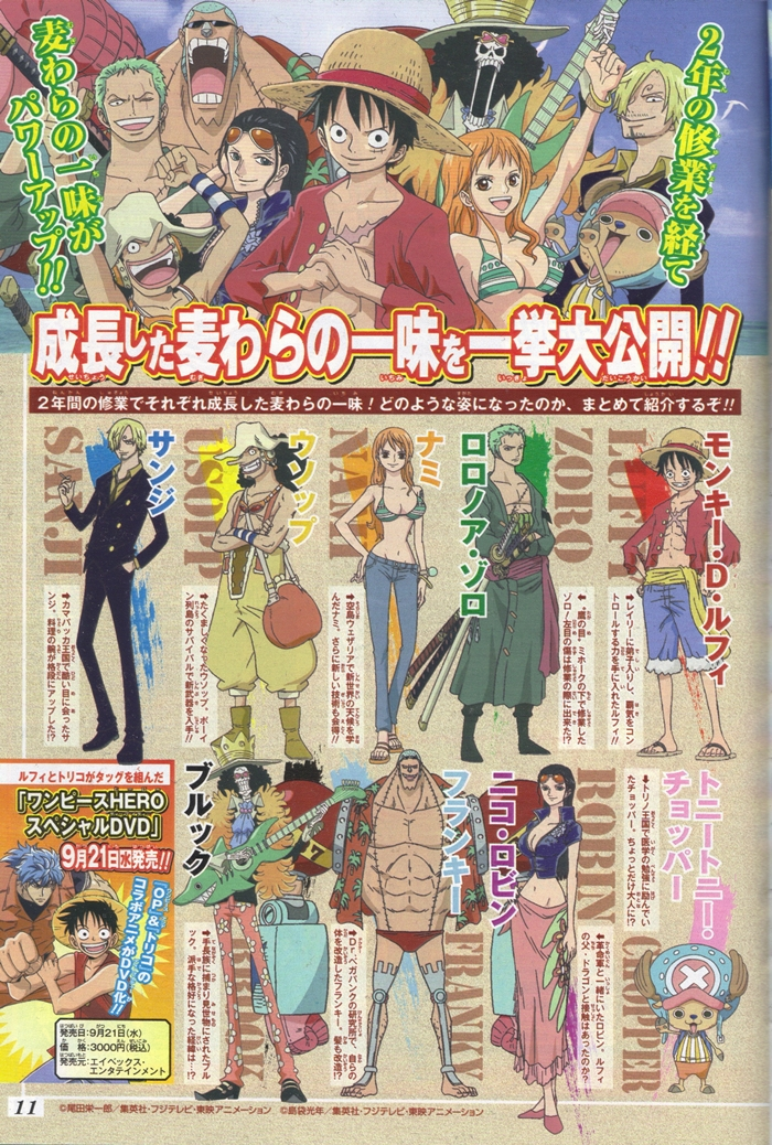 ONE PIECE Anime New Character Designs